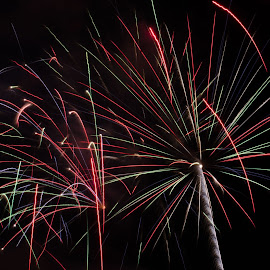 Sky Flowers by Cory Bohnenkamp - Abstract Fire & Fireworks ( sky, canada day, fireworks, night, flowers, light )