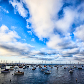 Marina by Andrew Ng - Landscapes Waterscapes ( monterey, sailboats, sailing, california, pch 1, boats, marina, pacific coast highway, dock, yachts )