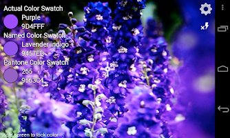 Screenshot of ColorEye Free