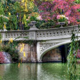 Bow Bridge in Central Park by Rachel Ellentuck - Landscapes Travel ( landscape photography, new york city, new york, bridges, central park, bow bridge )
