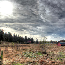 The Gathering by Ernie Kasper - Landscapes Prairies, Meadows & Fields ( clouds, hill, fence, sky, barn, nature, canada, land, surrey, forest, gate, british columbia )