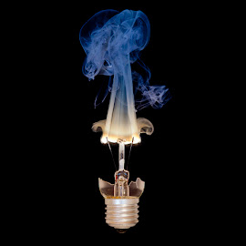 The Filament by Nicholas Hill - Abstract Fire & Fireworks ( bulb, high speed, filament, burning, flame )