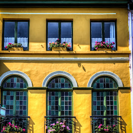 Windows by Glenn Forrest - Buildings & Architecture Other Exteriors ( colorful, windows, yellow, stucco, flowers, flower boxes )