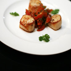 Seared Scallops With Tomato And Coriander Salsa