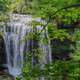 Natural Beauty by Judy Hall-Folde - Landscapes Mountains & Hills ( water, green, shady, cliff, waterfall, white, trees, franklin, brown, landscape, powerful water, north carolina )
