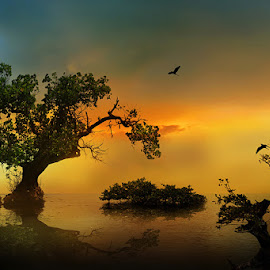by iD . - Nature Up Close Trees & Bushes ( beach, landscape )