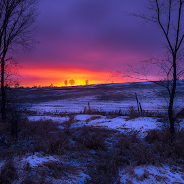 Blazing Winter Sky by Jack Brittain - Landscapes Sunsets & Sunrises ( hills, winter, canada, sunset, port perry, ontario, landscape )