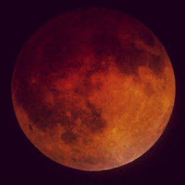 Blood Moon Rising by William Johnson - News & Events World Events
