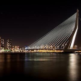 Erasmusbridge Rotterdam by Jeffrey Rietveld - City,  Street & Park  Skylines ( water, skyline, rotterdam, erasmusbridge, night,  )