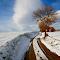 2736362-snowy-landscape.jpg