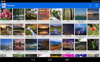 Screenshot of Flickr Mobile