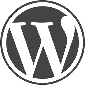 The WordPress Theme