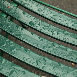 Boston Common by Lori Rider - Artistic Objects Furniture