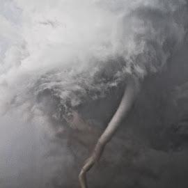 Alpena, SD EF4 Close Up by Tanner Schaaf - Landscapes Weather ( clouds, nature, funnel, damage, weather, storm, tornado, rain, ef4, closeup )