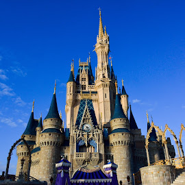 Cinderella's Castle by Lisa Silva - Buildings & Architecture Public & Historical ( fantasyland, fantasy, walt disney world, amusement park, florida, magic kingdom, castle, disney, cinderella )