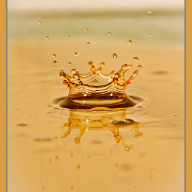 Golden Crown by Chris Duffy - Abstract Water Drops & Splashes ( water, abstract, reflection, waterdrop, splash, crown, golden )