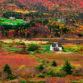 The Colours Of Autumn by Lance Nguyen - Landscapes Travel