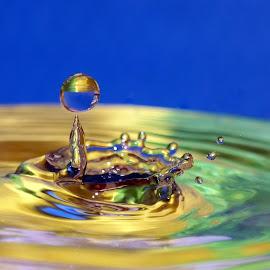 drops & splash by Hale Yeşiloğlu - Abstract Water Drops & Splashes ( water drops, waterdrop, green, drop, drops, waterdrops )