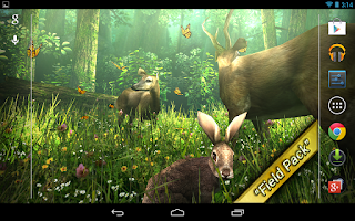 Screenshot of Forest HD