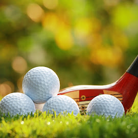 Golf Balls and Wooden Driver by Prachit Punyapor - Sports & Fitness Golf