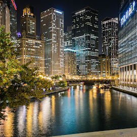 chicago night  by Dorin Dobocan - Buildings & Architecture Architectural Detail (  )