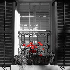 Another black and white with red. I been fooling around with doing b&w's with selective color, so hopefully i will be real good at it. by Dan Tomkins - Buildings & Architecture Other Exteriors (  )