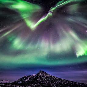 Aurora mighty by Benny Høynes - Landscapes Mountains & Hills ( hills, winter, auroras, northernlights, stars, norway,  )