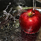 Apple splashed.jpg