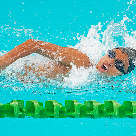 Singapore National Swimming competition 2014 by Foo Fok - Sports & Fitness Swimming