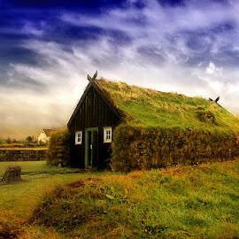 by Marina Đanić - Landscapes Prairies, Meadows & Fields