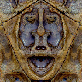 Laughing Monkey by Jim Downey - Digital Art Things ( strange, sandstone, abstact, rock formation, seaside )