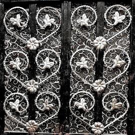 Door by Doug Hilson - Abstract Patterns ( pattern, metal work, door india )
