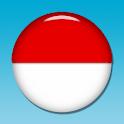 【販売終了】 『くすり55検索2011』 icon