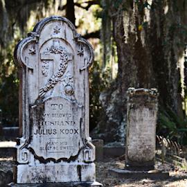 Bonaventure Cemetery by Jill Beim - City,  Street & Park  Cemeteries ( tombstone, faith, cemetery, graveyard,  )