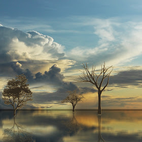 formasi awan  refleksi pohon2 crop.jpg
