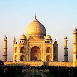 The Glowing Taj by Mrinmoy Ghosh - Buildings & Architecture Statues & Monuments (  )