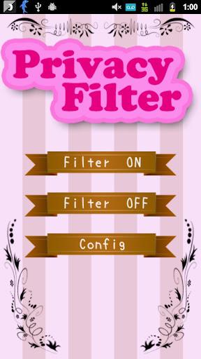 Privacy Filter (プライバシーフィルター)