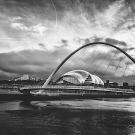 Millennium by Mark Donaldson - Buildings & Architecture Bridges & Suspended Structures ( sage, tyne, millennium, tynebridge, newcastle, architecture, bridge, bridges, northeast, river )