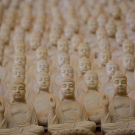 1000 Buddhas by David Downes - Novices Only Objects & Still Life ( buddha )