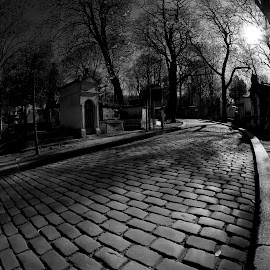 Spirit Walk by Brooke Green - City,  Street & Park  Cemeteries ( paris, black and white, cemetery, urban landscape, cobblestone, street photography )