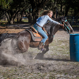 Barrel Racer by Lynn Wiezycki - Sports & Fitness Other Sports ( equine, barrel racer, blue, horse, action, sport, western )