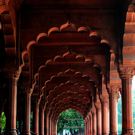 red fort by Rahul Nair - Buildings & Architecture Architectural Detail ( interior, symmetry, historical, architecture, pillars )