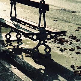 City bench, Paris by Timothy Carney - City,  Street & Park  Street Scenes ( paris, bench, shadows )