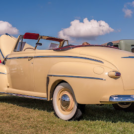 1940's Ford Convertable by Jack Brittain - Transportation Automobiles ( paris, old, canada, convertable, ontario, show, ford, 40s )