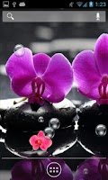 Screenshot of Orchid Bubbles II