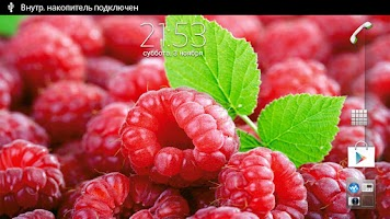 Screenshot of Raspberries Live Wallpaper