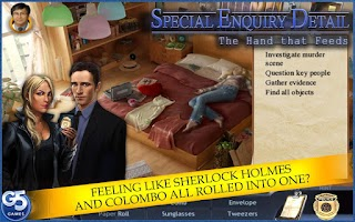 Screenshot of Special Enquiry Detail