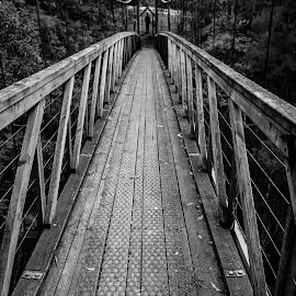 Suspension Bridge by Peter Nguyen - Buildings & Architecture Bridges & Suspended Structures ( memorial, suspension, loch, bridge,  )