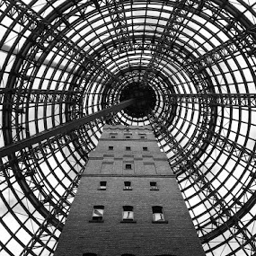 Building Dome - B/W by Ian McAdie - Black & White Buildings & Architecture ( structure, building, vertical lines, melbourne, brick, black & white, dome, architecture, spiral, steel, heritage, city, urban, tower, macro, pwc, frame, window, australia, glass, twist, downtown, black and white, b&w, landscape,  )