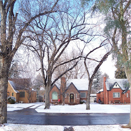 Snowfall on Ogden Street by Sean M. Chase - Buildings & Architecture Homes ( houses, winter, snow, denver, colorado )